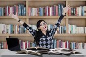 Cheerful Student Studying In Library