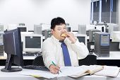 Fat Businessman Working While Eating