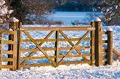 Gate through a snowy field in warm afternoon light