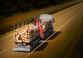 foto of logging truck  - Logging truck on the highway - JPG