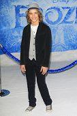 LOS ANGELES - NOV 19: Tyler Ganus at the premiere of Walt Disney Animation Studios' 'Frozen' at the El Capitan Theater on November 19, 2013 in Los Angeles, CA