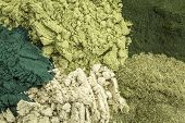 foto of chlorella  - background of five healthy green dietary supplement powders  - JPG