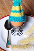 Boiled egg and egg cosy.