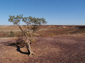 The colorful Breakaways  in the outback