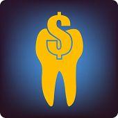 Dental cost