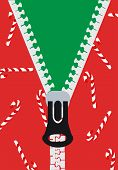 pic of zipper  - Christmas Vector  - JPG