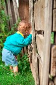 stock photo of slit  - Little curly boy looks into slit wooden fence in the village - JPG