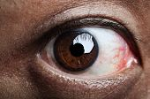 pic of pervert  - Close up on human eye looking into camera - JPG