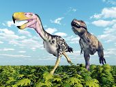 foto of tyrannosaurus  - Computer generated 3D illustration with the Terror Bird Kelenken and the Dinosaur Tyrannosaurus Rex - JPG