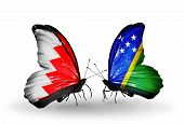 Two Butterflies With Flags On Wings As Symbol Of Relations Bahrain And Solomon Islands