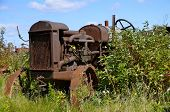 Old rusty tractor parked in the brush