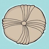 pic of echinoderms  - Round echinoderm fossil drawing blue white background - JPG