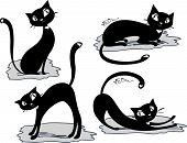 set cat vector