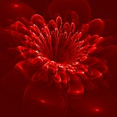 Beautiful Flower On Red Background. Computer Generated Graphics.