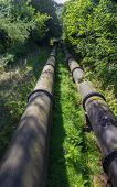picture of hydro  - Two water pipes - JPG