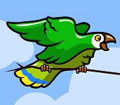 picture of green-winged macaw  - Green parrot bird on the branch - JPG