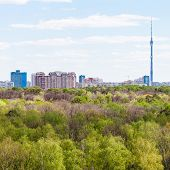 picture of house woods  - view of city and green woods in spring day - JPG