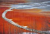 picture of greenpeace  - Pollution of a lake with contaminated water from a gold mine - JPG
