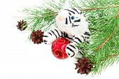 picture of white-tiger  - White tiger toy and decorations on white background - JPG
