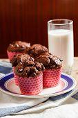 foto of chocolate muffin  - chocolate muffins - JPG