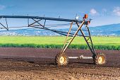 image of sprinkler  - Automated Farming Irrigation Sprinklers System in Operation on Cultivated Agricultural Field on a Bright Sunny Summer Day - JPG