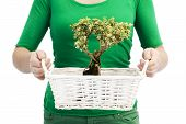 picture of bonsai  - Woman in green holding bonsai tree Environment and ecology conceptual image - JPG