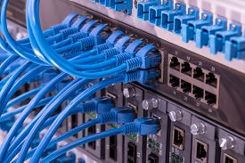stock photo of cat5  - close up of network cables connected to switch - JPG