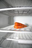 Almost Empty Refrigerator