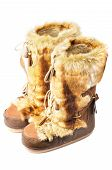 Furry Winter Boots Isolated On White poster