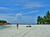 Tropical Sandy Beach