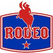 Rodeo Cowboy bucking bronco horse