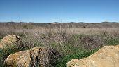 Lasky Mesa Panorama