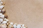 Sea Shells And Stones With Sand As Background