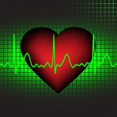 The heartbeat, vector illustration,