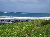 Kauai Beach