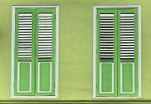 Lime Green shutter window doors