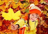 picture of outerwear  - Little girl in autumn orange leaves - JPG