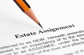 Estate Assignment