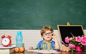 Back To School. First Day Of School. Kid In Class Room With Blackboard On Background. Child From Ele poster