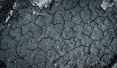 Top View Of Cracked Soil. Background Of Dry Black Soil With Cracks. poster