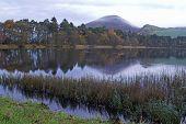 Nebliger Sonnenaufgang über Eildon Hügeln und Bowden Loch, Nr. Melsrose, scottish borders