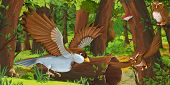 Cartoon Summer Scene With Deep Forest And Birds Owls And Some Other Bird - Nobody On Scene - Illustr poster