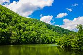 Green Forest Landscape. Mountain Forest. Forest Lake In The Mountains. Lake View Mountain Forest. poster