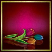pic of purple rose  - abstract purple grunge background with color tulips - JPG