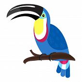 Wildlife Toucan Icon. Cartoon Of Wildlife Toucan Vector Icon For Web Design Isolated On White Backgr poster