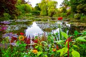 Monet Garden And Pond At Giverny, France. Beautiful Garden And Pond With Clustered Of Colorful Flowe poster