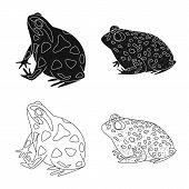 Vector Illustration Of Wildlife And Bog Symbol. Collection Of Wildlife And Reptile Stock Vector Illu poster
