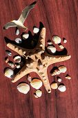 Image With A Large Sea Star Surrounded By Many Shells. Starfish On Wood Background. Elements Of Sea  poster