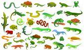 Reptiles Amphibians Icons Set. Cartoon Set Of Reptiles Amphibians Icons For Web Design poster