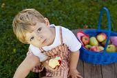 Little boy eating fresh apple from garden